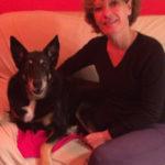 qui-suis-je garde familliale, éducateur et comportementaliste canin à Allinges (chablais) en Haute-Savoie