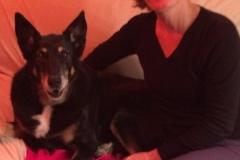 baia, garde de chiens à Allinges (chablais) - Gard éduc canin